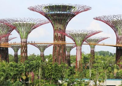 Gardens of the Bay